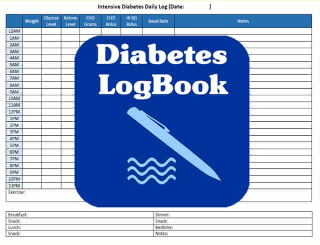 image relating to Free Diabetic Log Book Printable identify Diabetic issues Logbook For Older people Little ones