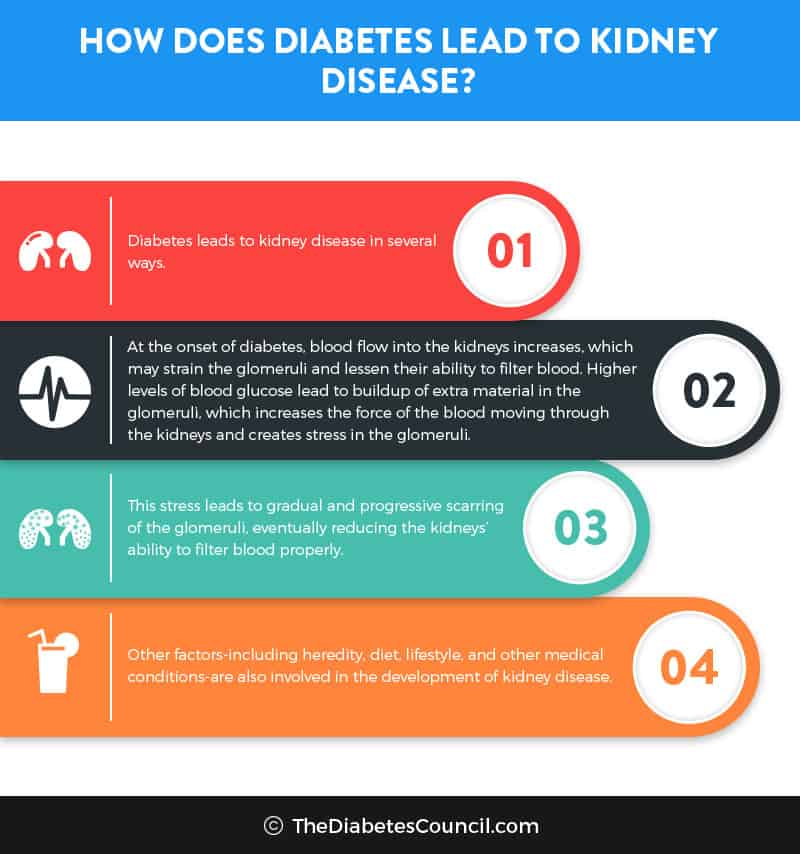 renal failure and diabetes diet