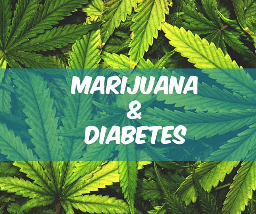 Image result for CBD compound in cannabis could treat diabetes, researchers suggest