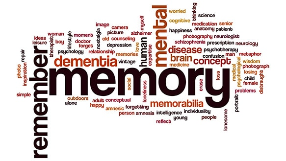 There Are Four Different Types Of Memory Loss The Two That Most Common And You May Have Heard Short Term Long