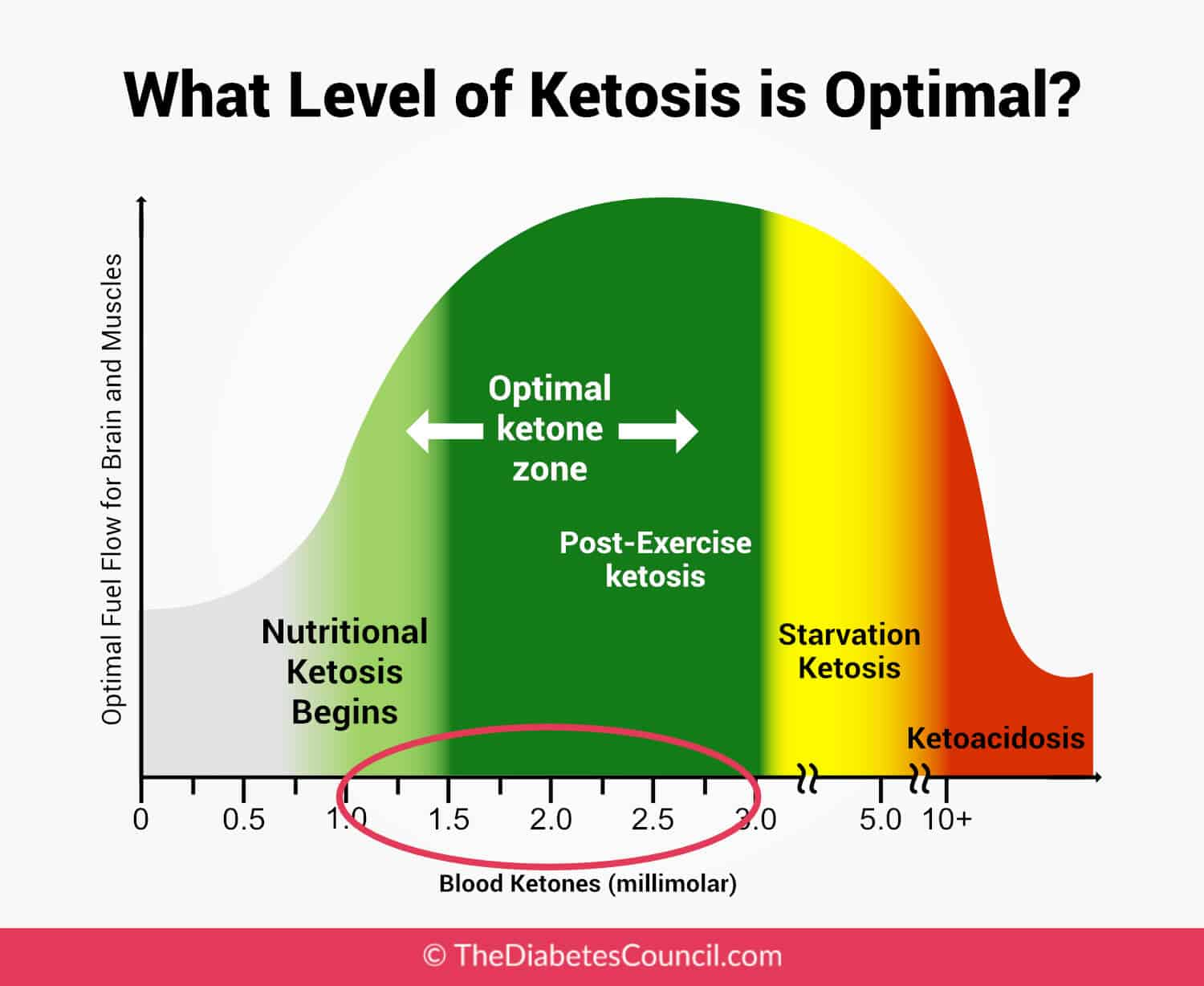 Learn About Paleo & Keto Diets